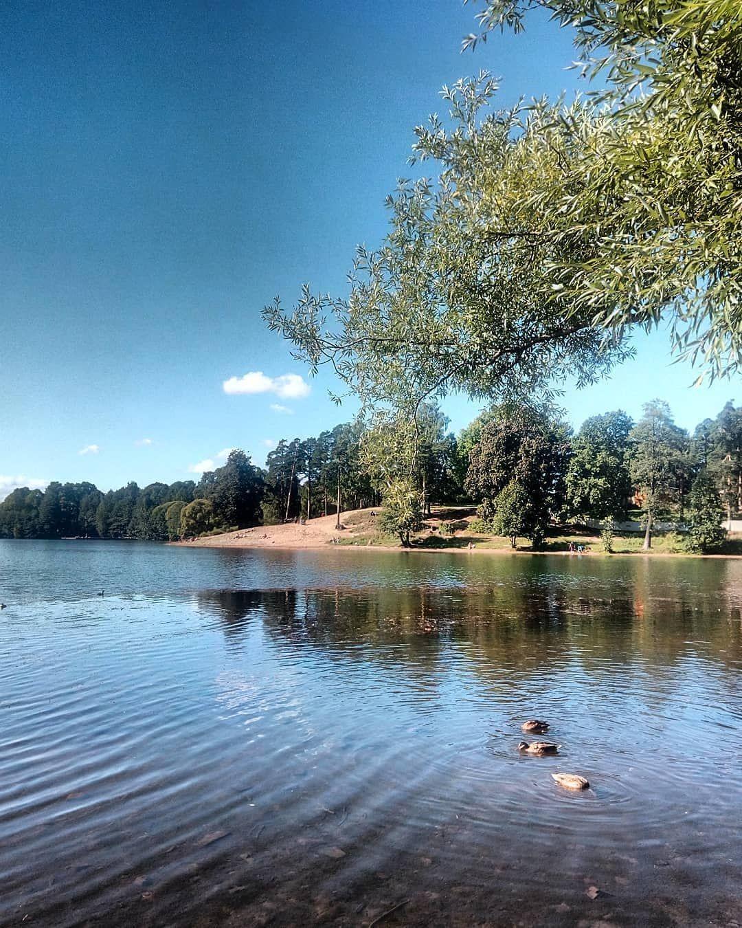 верхнее суздальское озеро, город санкт-петербург фото день ...