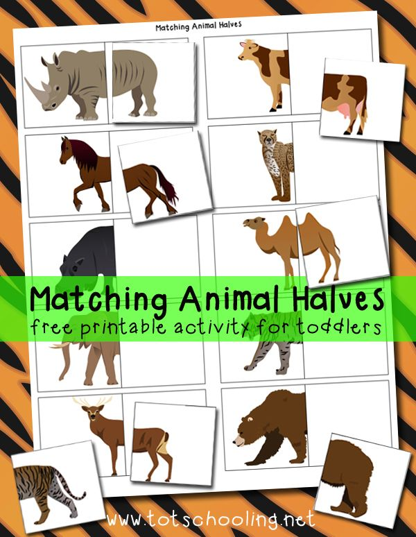 Matching Animal Halves Printable Activity Autism Interactive