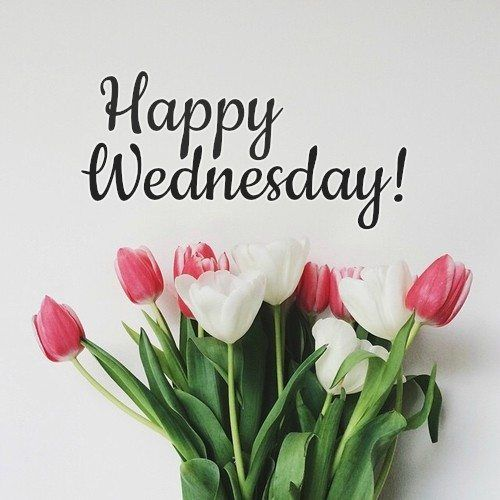 Good Morning And Happy Wednesday! Pictures, Photos, and ...