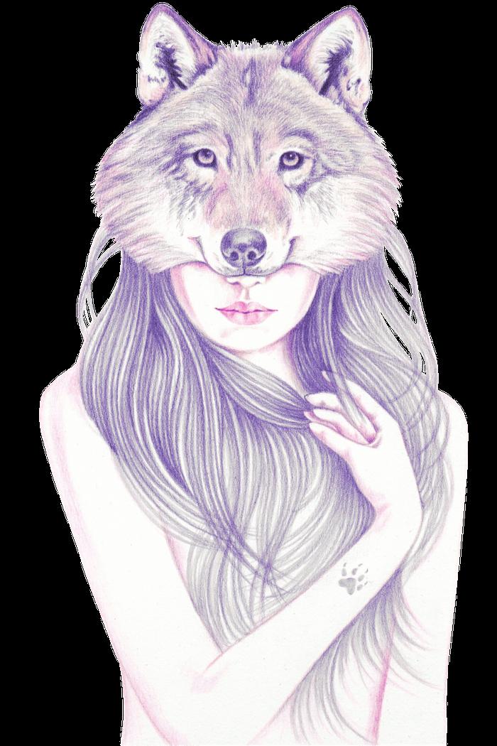 Pencil Drawing Ob Paper Art Canvas Prints Wolf Sketch