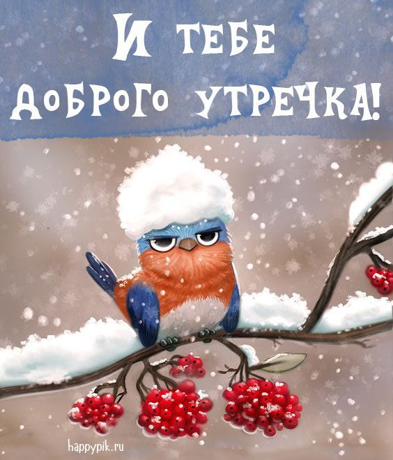 Картинки С добрым зимним утром с пожеланиями. 70 картинок ...