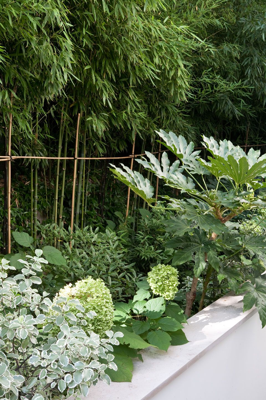 terrasse en rez de jardin paris 16 gardening pinterest terrasses paris et jardins. Black Bedroom Furniture Sets. Home Design Ideas