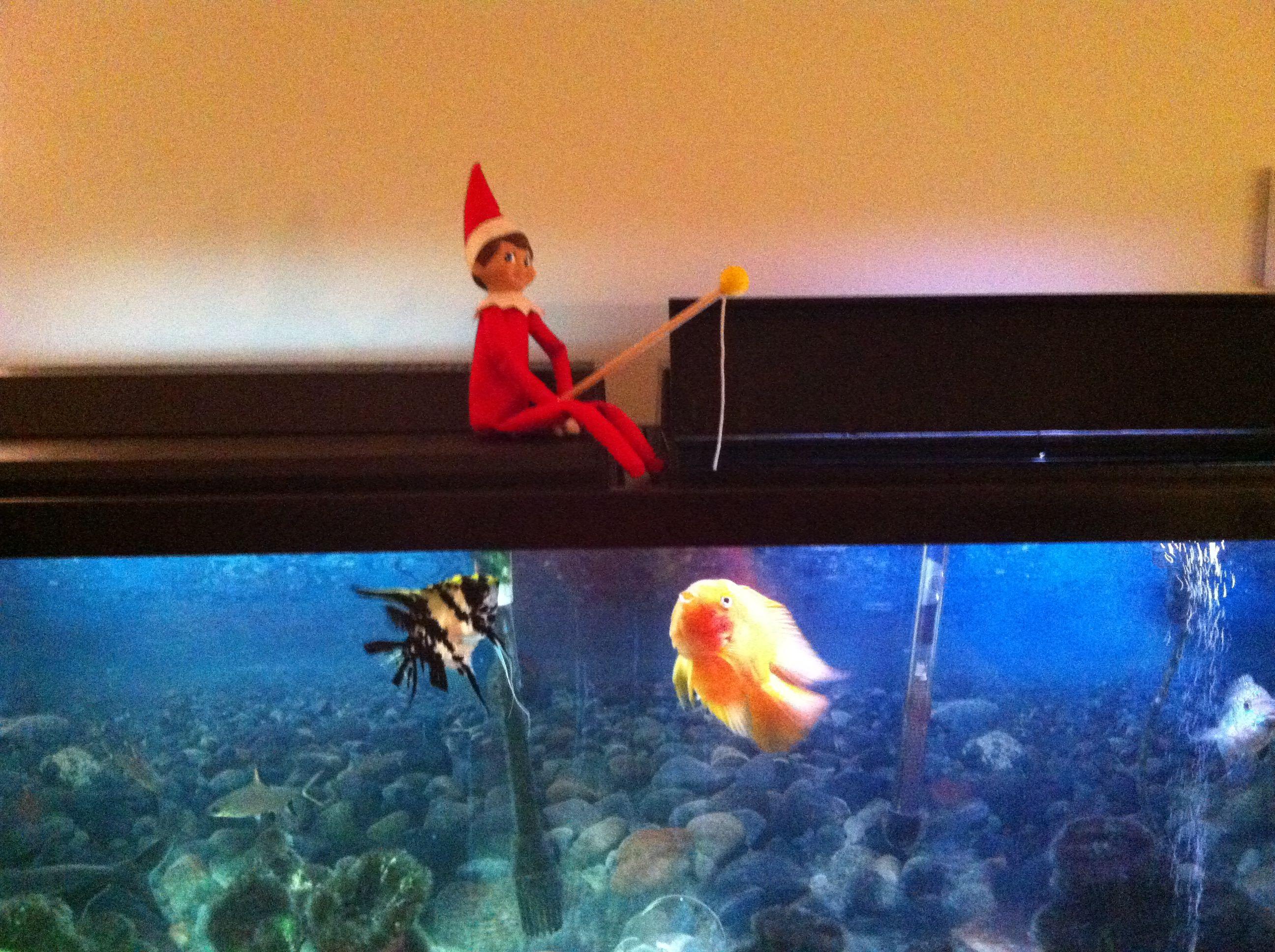 Fishing elf on the shelf elf on the shelf pinterest for Elf on the shelf fishing