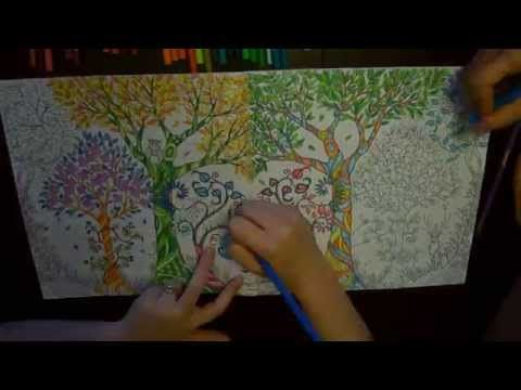 A Saturday Afternoon Of Colouring Book Fun This Is The Adult Called Enchanted Forest By Johanna Basford
