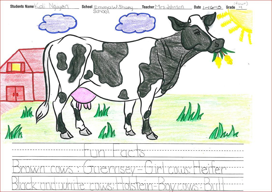 Dairy Handouts Resources Videos To Supplement Mobile