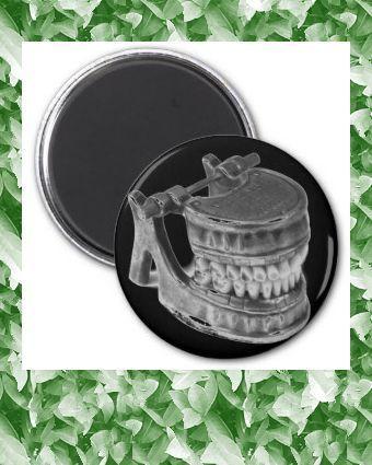 Spooky Antique Dental Model Goth Magnet