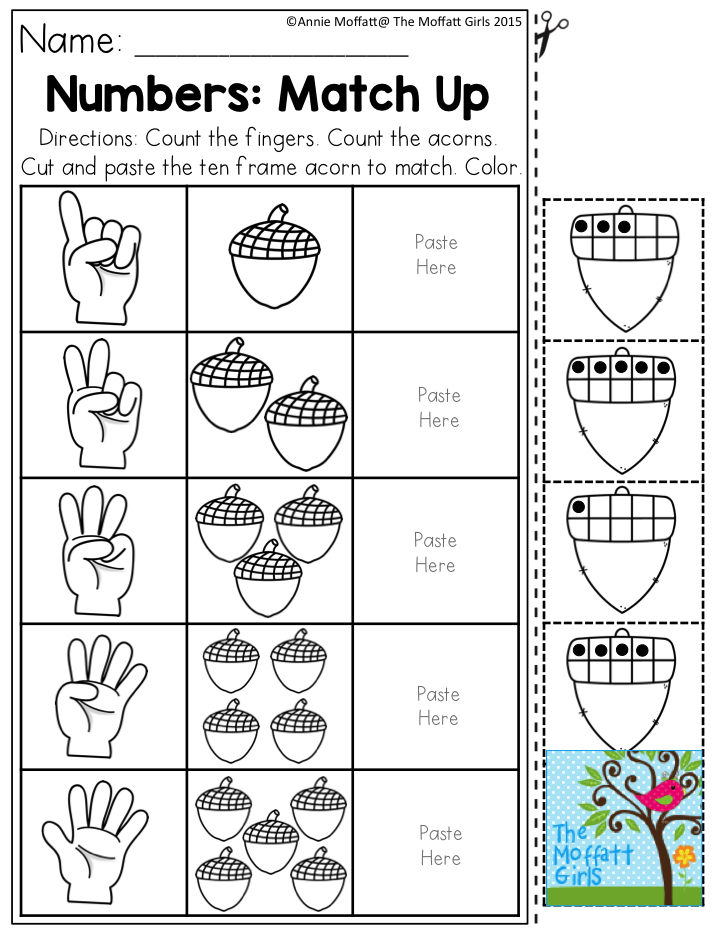 Numbers: Match Up- Count the fingers and number of acorns