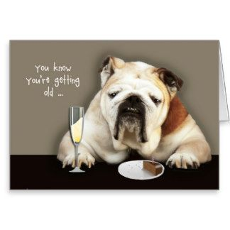 Birthday Cards Dogs Funny