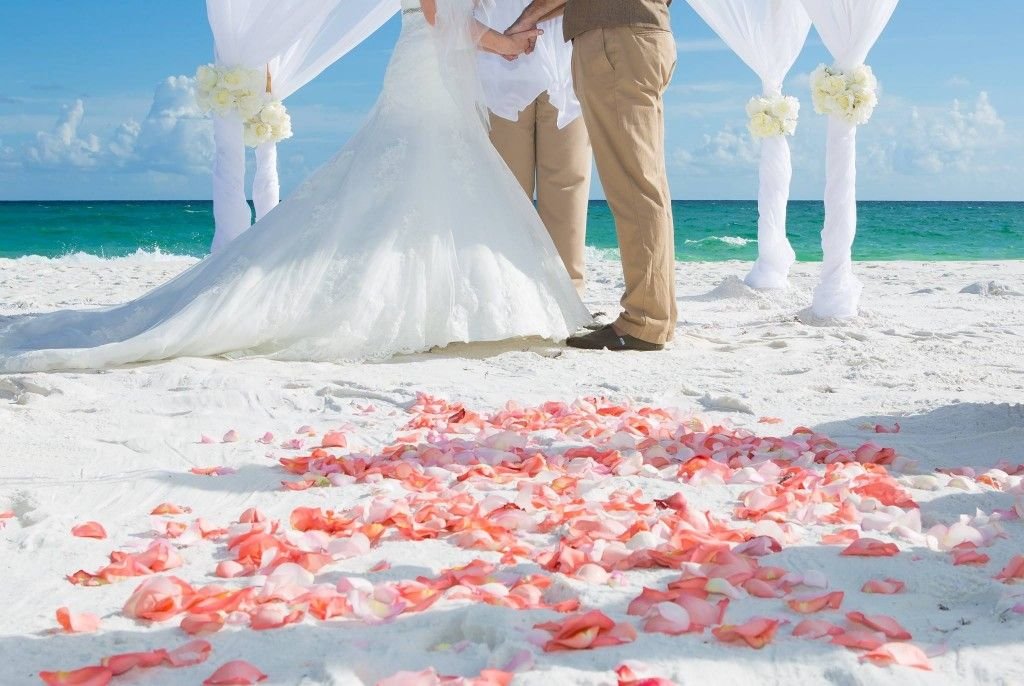 Destin Beach Wedding Arbor Beach Wedding Packages Beach Wedding Beach Wedding Arbors