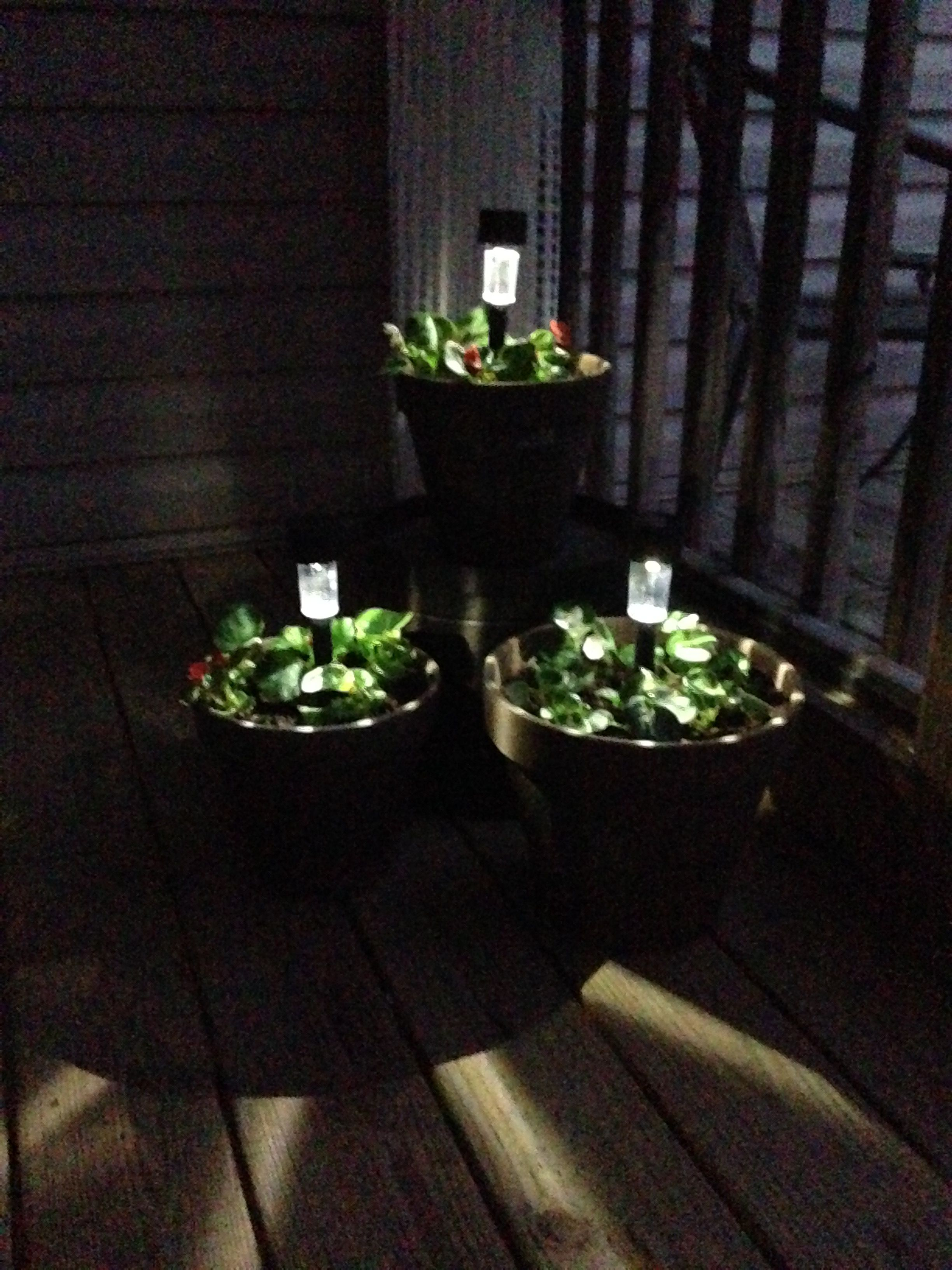 Solar Lights In Flower Pots Flower Pots Flowers Solar