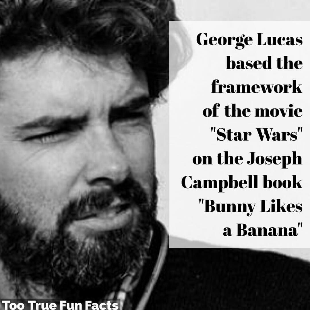 It's s good book. #starwars #statwarsfan #georgelucas #scifi #sciencefiction #movies #films #comedy #funny #humor #parody #satire #trivia #facts #funfacts