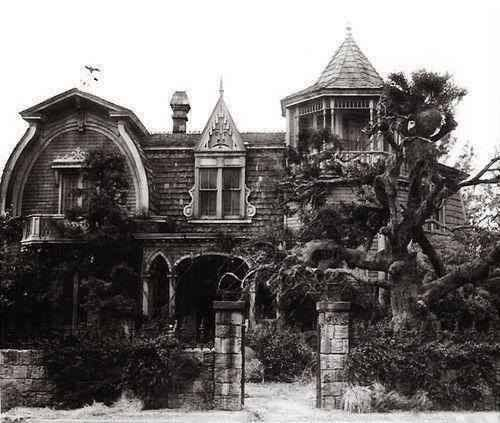 I Love This Old Haunted House At 1313 Mockingbird Lane