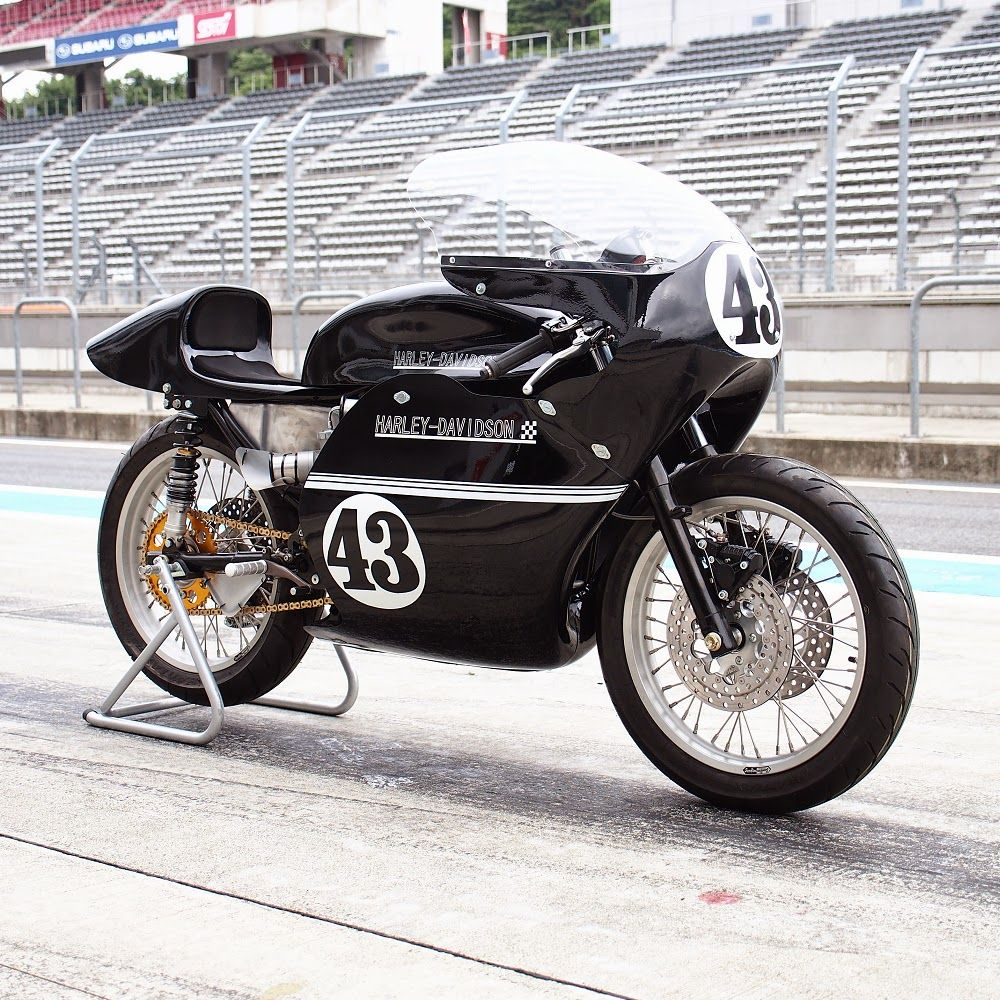 El Corra Motors: HOT-DOCK racer - XR750TT - SNAKE #43