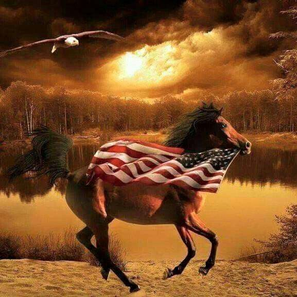 Wild Horses and Old Glory