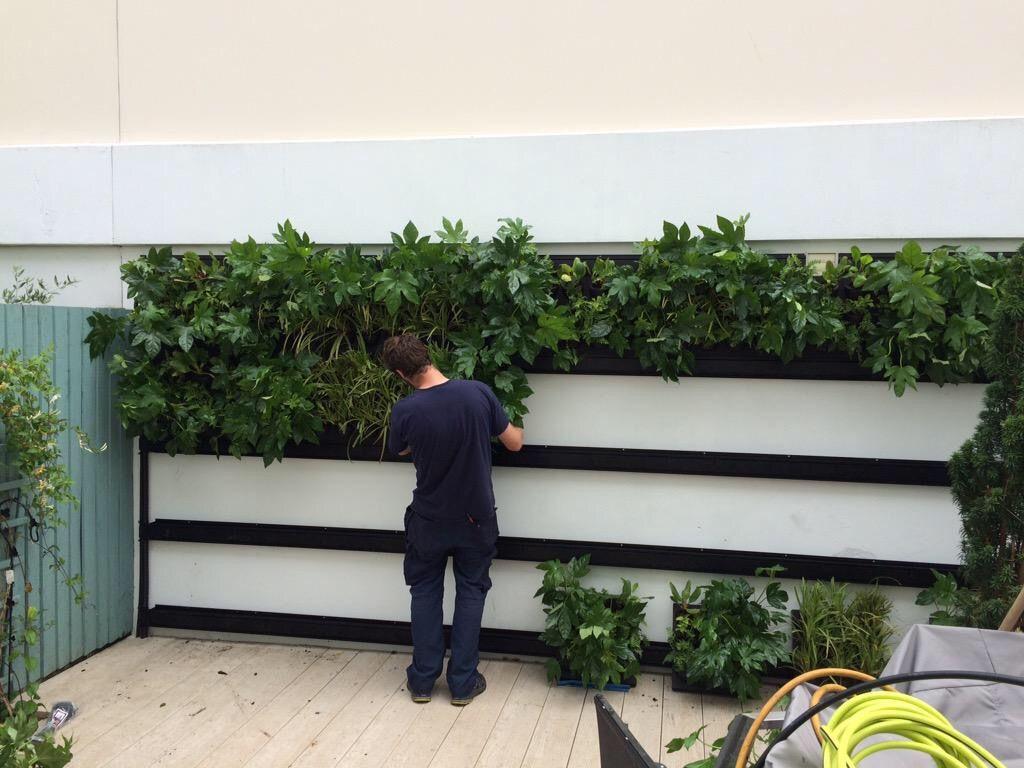 ExecuFlora - Room Divider Planter | day spa decor | Pinterest ...