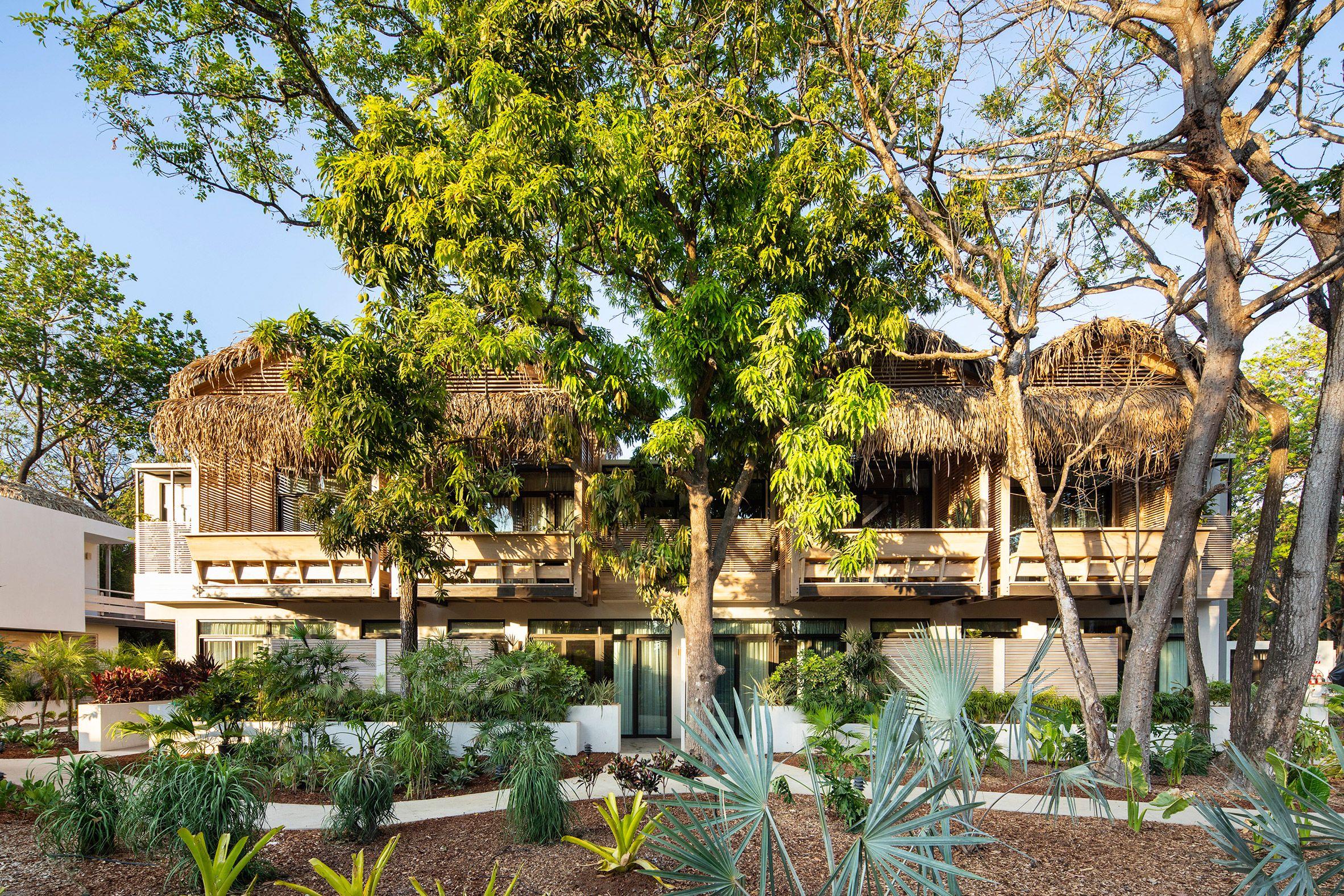 Studio Saxe Transforms Costa Rican Lodge Into The Gilded Iguana
