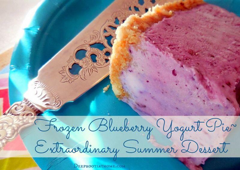 Frozen Blueberry Yogurt Pie: Extraordinary Summer Dessert ...