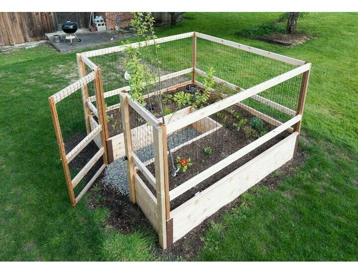 Raised bed enclosed garden Outdoor gardens, Garden