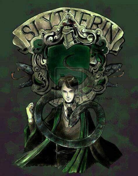 Pin Von Rose Auf Cine Tv Fanart Harry Potter Voldemort Tom Riddle