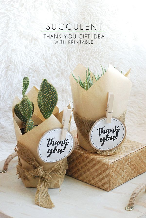 Succulent Thank You Gift Idea With Free Printable Tag