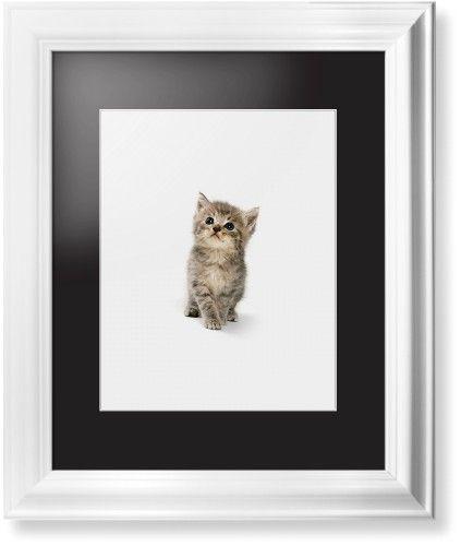 Kitten Framed Print, White, Classic, White, Black, Single piece, 11 x 14 inches