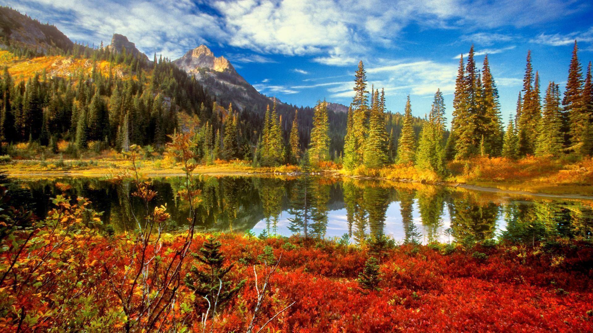 Image Associee Scenery Background Landscape Wallpaper Autumn Scenery