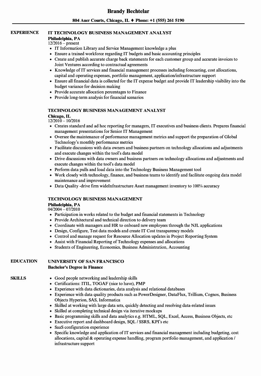 Information Technology Manager Resume Examples Elegant