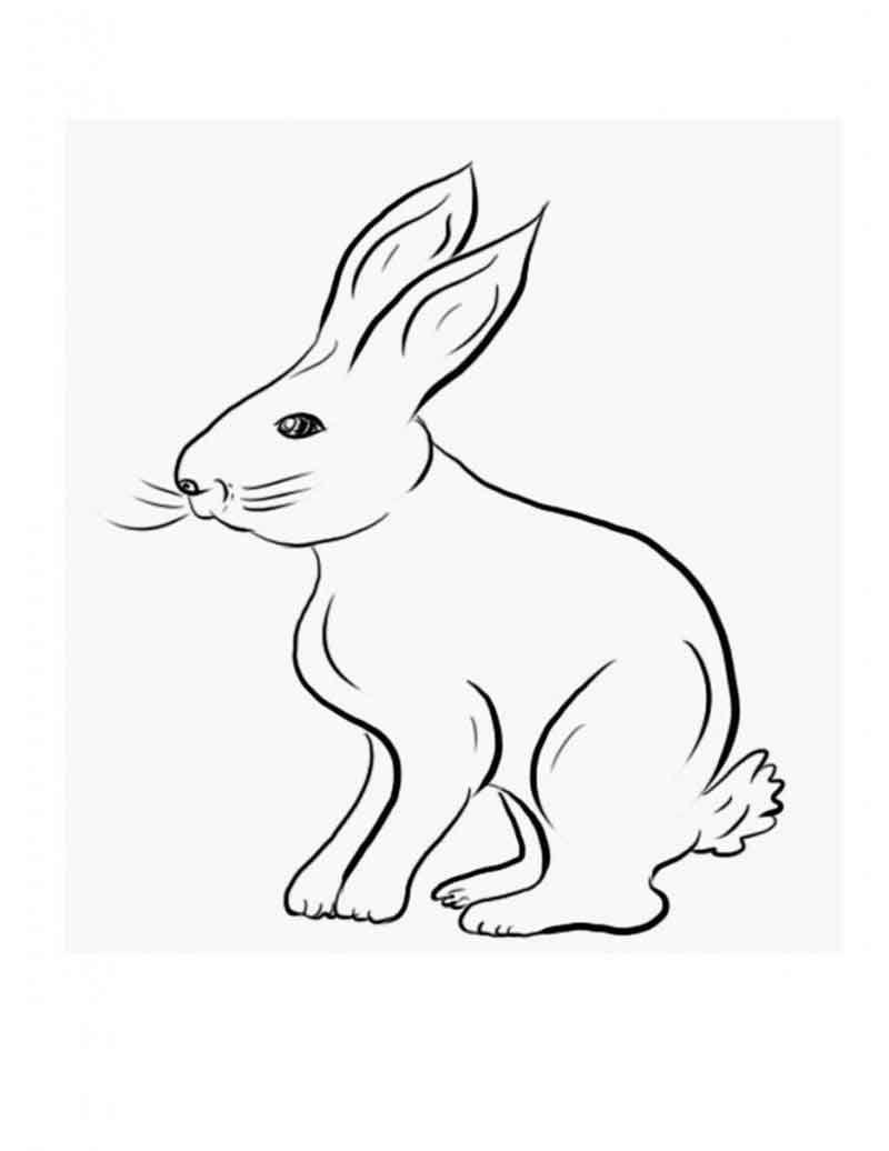ausdrucken #für #Kaninchen #Kinder #Malvorlagen #zum Rabbit