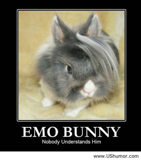 Emo guy http://ushumor.com/emo-guy/
