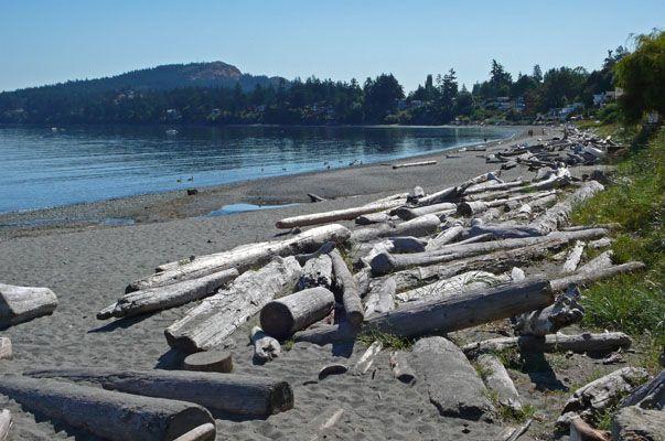 cordova bay beach - Google Search