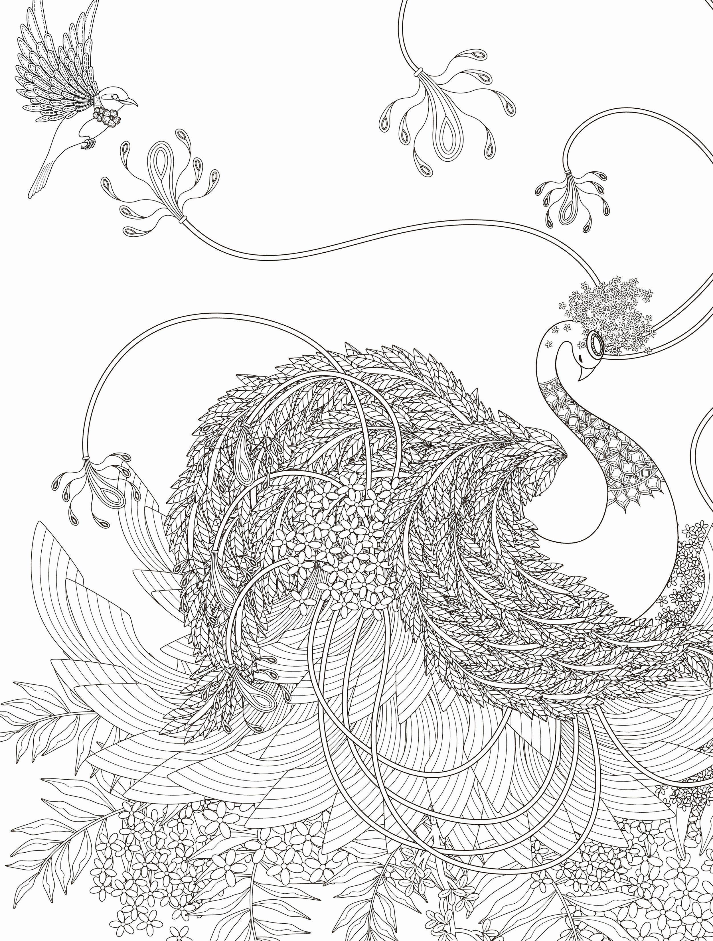 Abc Coloring Pages Luxury Wildlife Coloring Pages Unicorn Coloring Pages Bird Coloring Pages Animal Coloring Pages