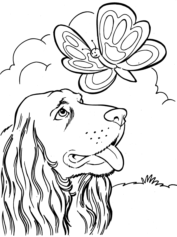 Kleurplaten Honden Duitse Herder.Honden Kleurplaat Kleurplaten Honden En Tekenen