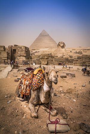 Pyramids, Gizah - Egypt by Amine Sekkioui