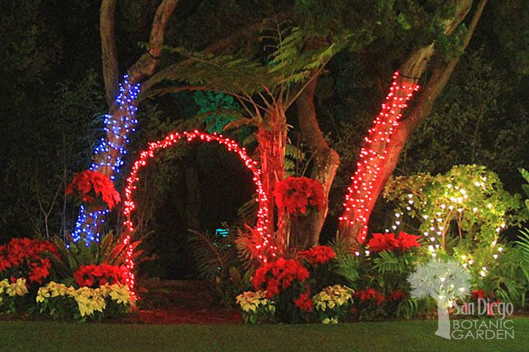 """The San Diego Botanical Gardens annual """"Garden of Lights"""" celebration will have the addition of 20 Sparkle Magic Laser Illuminators adding their dazzling lighting to their annual show."""