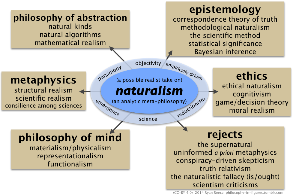 cognitivism in philosophy essay Cognitivism in philosophy essay 1670 words | 7 pages provide both sides of cognitivism and non-cognitivism and argue that non-cognitivism is superior to cognitivism and that it is also more believable.