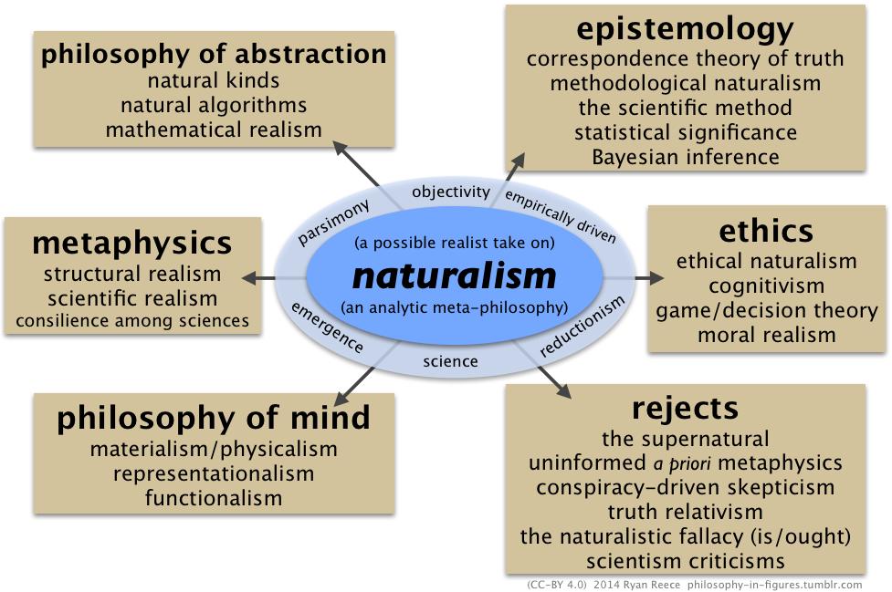 un realista asumir el naturalismo