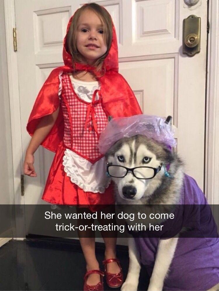 Explore Cute Dog Halloween Costumes and more!  sc 1 st  Pinterest & Sarcastically Speaking (da-ghetto-booteh: Thatu0027s so cute ...