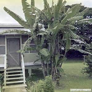 base housing clark afb philippines - Yahoo Image Search