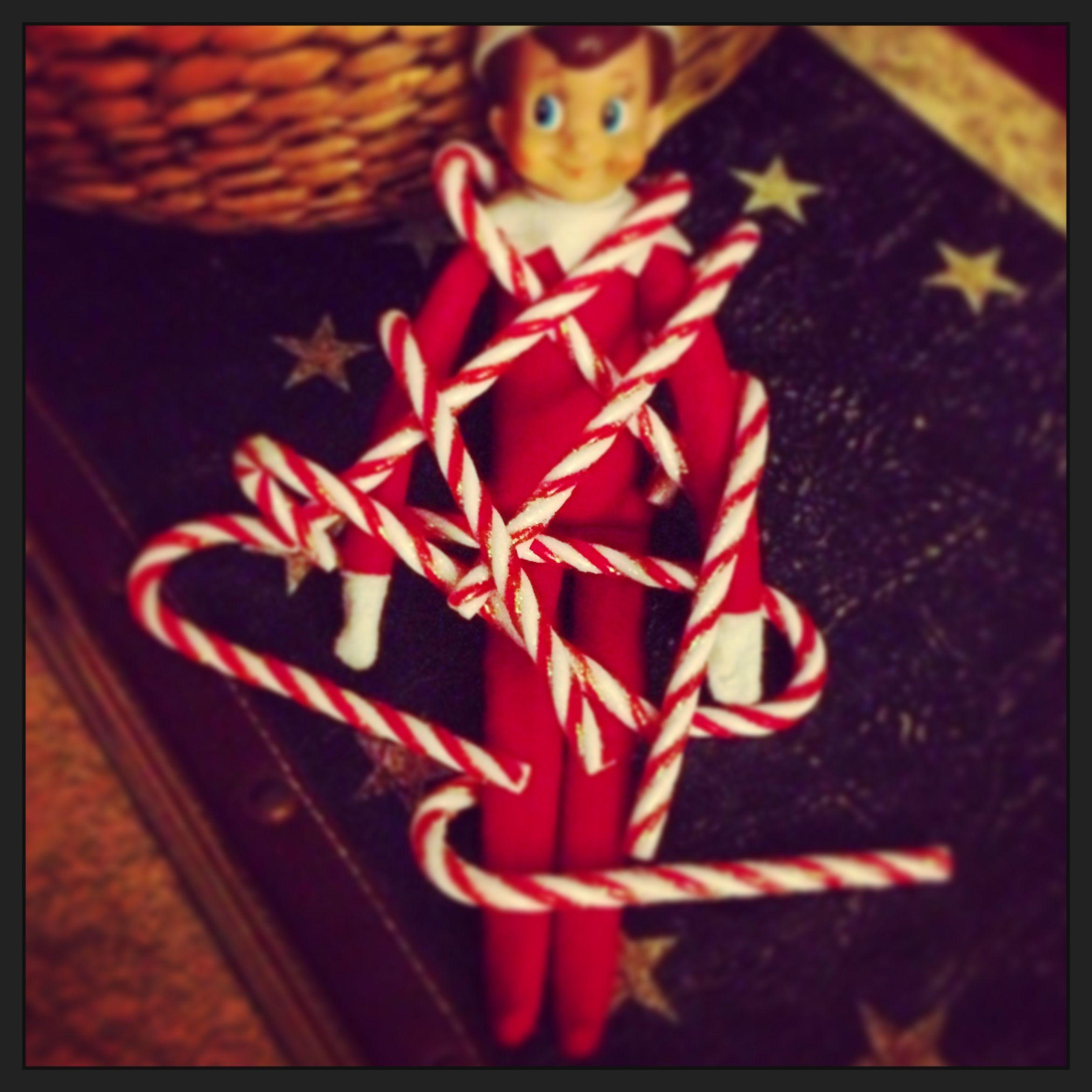 Elf on shelf!