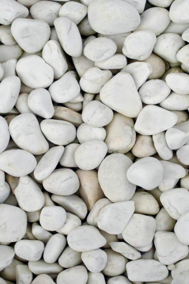 Pebbles Cultivo De Lavanda Planos De Fundo Planos De Fundo Tumblr