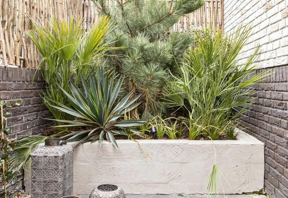 Verwonderend Goedkope Tuin Ideeen Tips Voor Een Mediterrane Tuin Inspiratie En MX-29