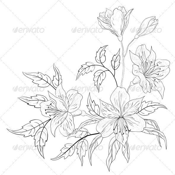 Flower Alstroemeria Contour Flower Drawing Flower Bouquet Drawing Peruvian Lilies
