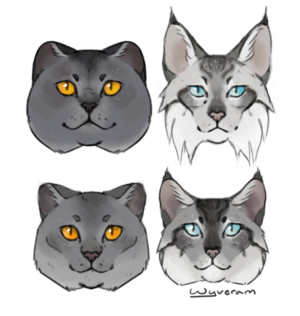 The Characters Are Graystripe, Silverstream (top