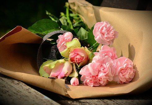 Buque De Flores Fotos Baixe Imagens Gratis Pixabay Flores