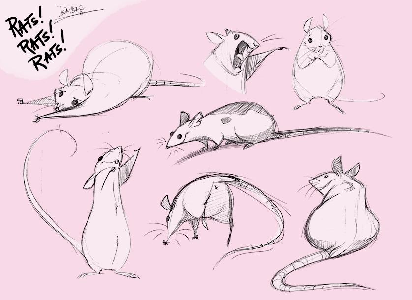 рисунки животных крысы того