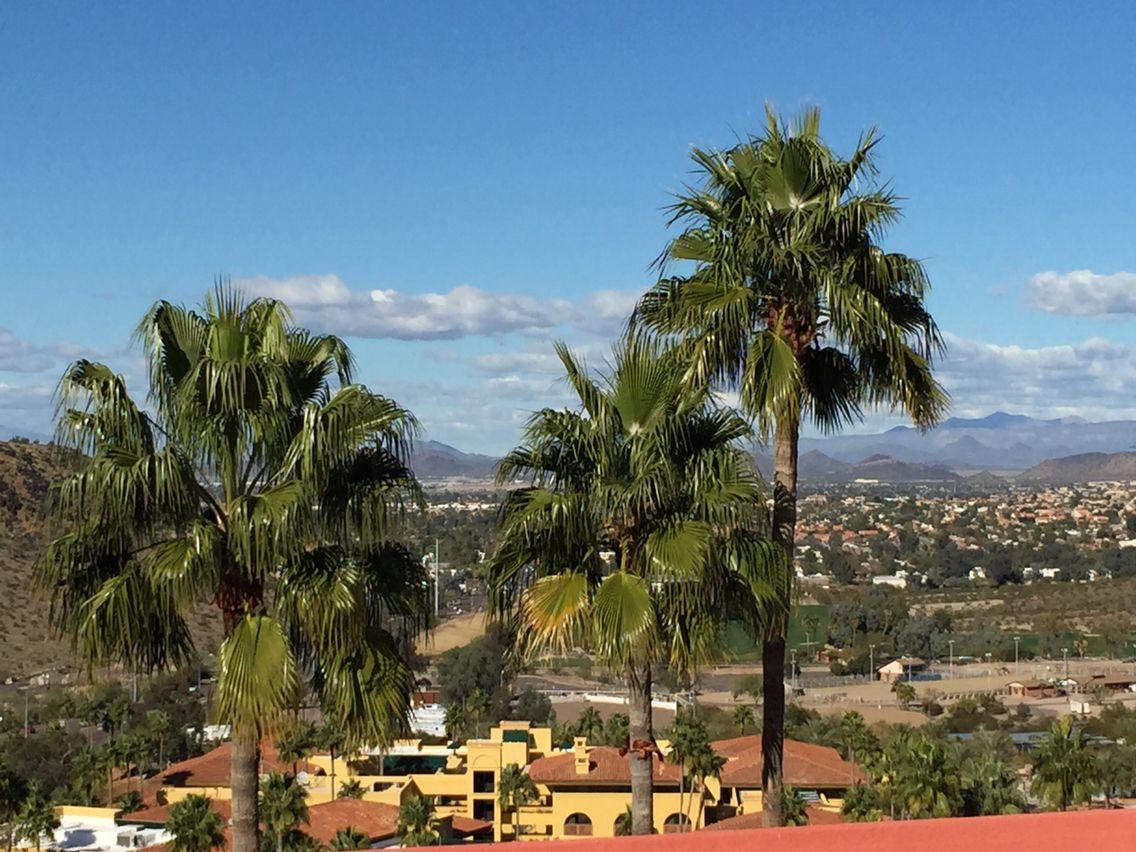 Point Hilton Tapatio Cliffs Phoenix, AZ