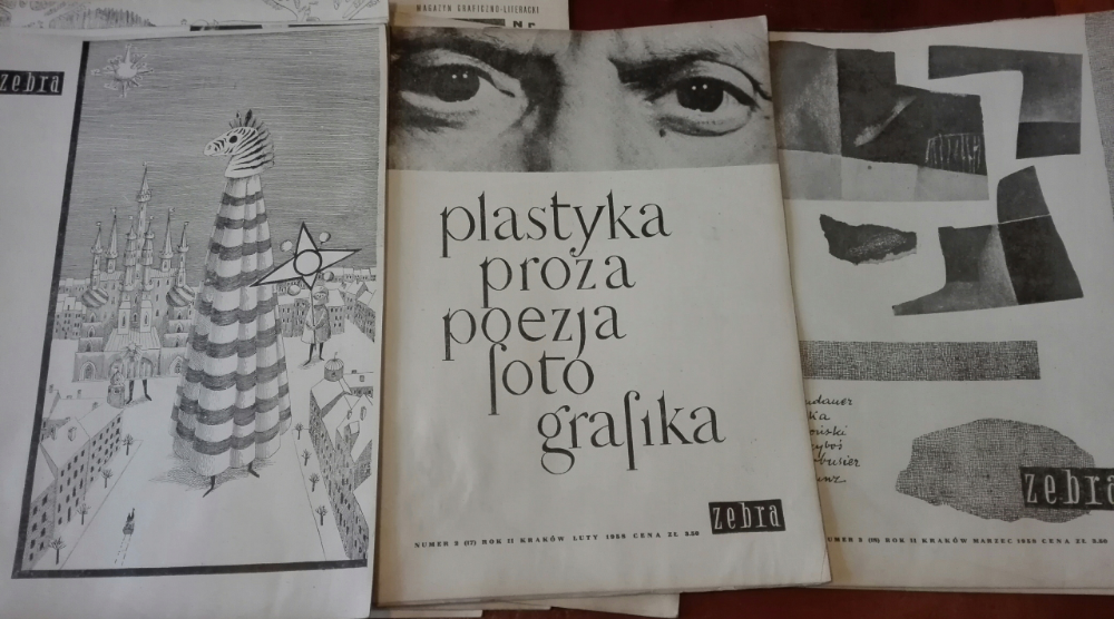 Magazyn Graficzno Literacki Zebra 18 Szt Grafika 8118623398 Oficjalne Archiwum Allegro Book Cover Art Books