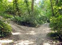 pathways - Images