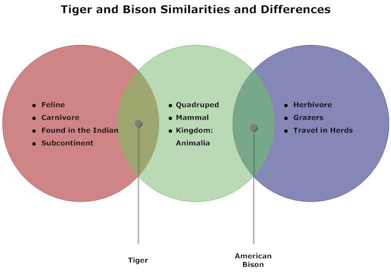 Tigers and bison venn diagram presentation quality visuals tigers and bison venn diagram ccuart Image collections