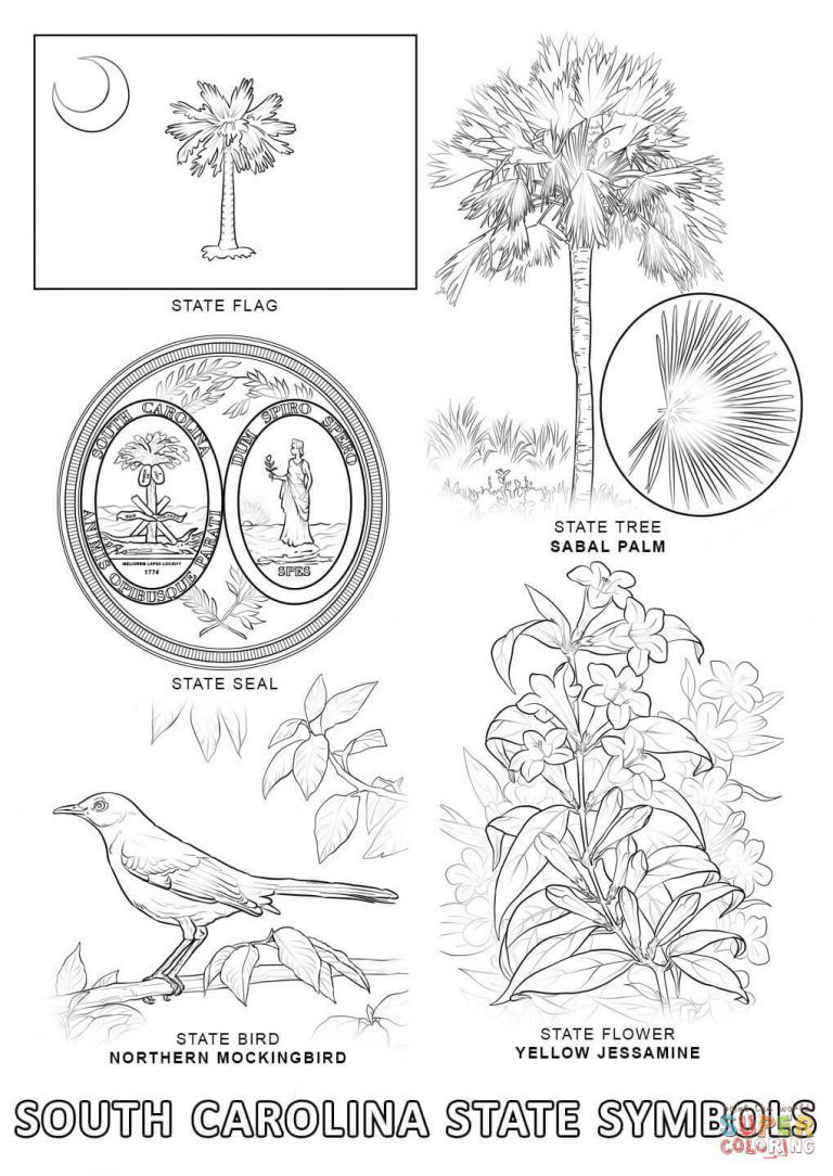 North Carolina State Flower Coloring Page With South Carolina State Symbols Coloring Page Free Printab Bird Coloring Pages Flower Coloring Pages Coloring Pages